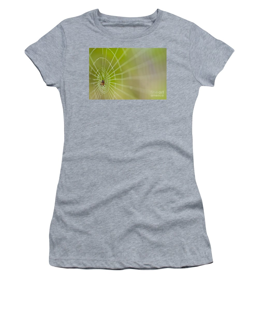 Aranae Women's T-Shirt featuring the photograph Spider Web With Dew Drops With Spider On Web by Jim Corwin