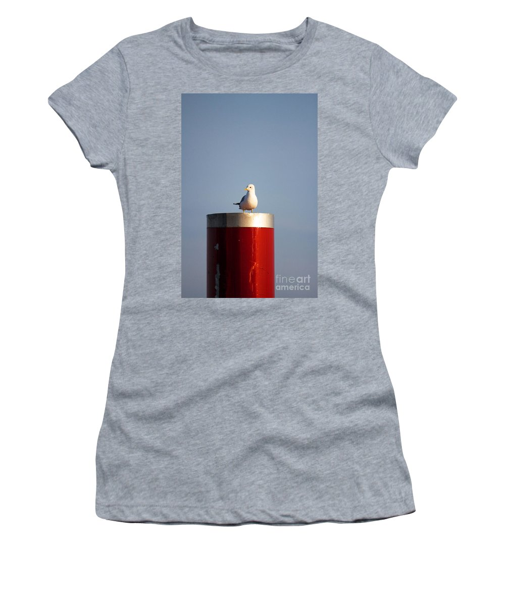 Afternoon Women's T-Shirt featuring the photograph Seagull Perched On Red Column by Jannis Werner