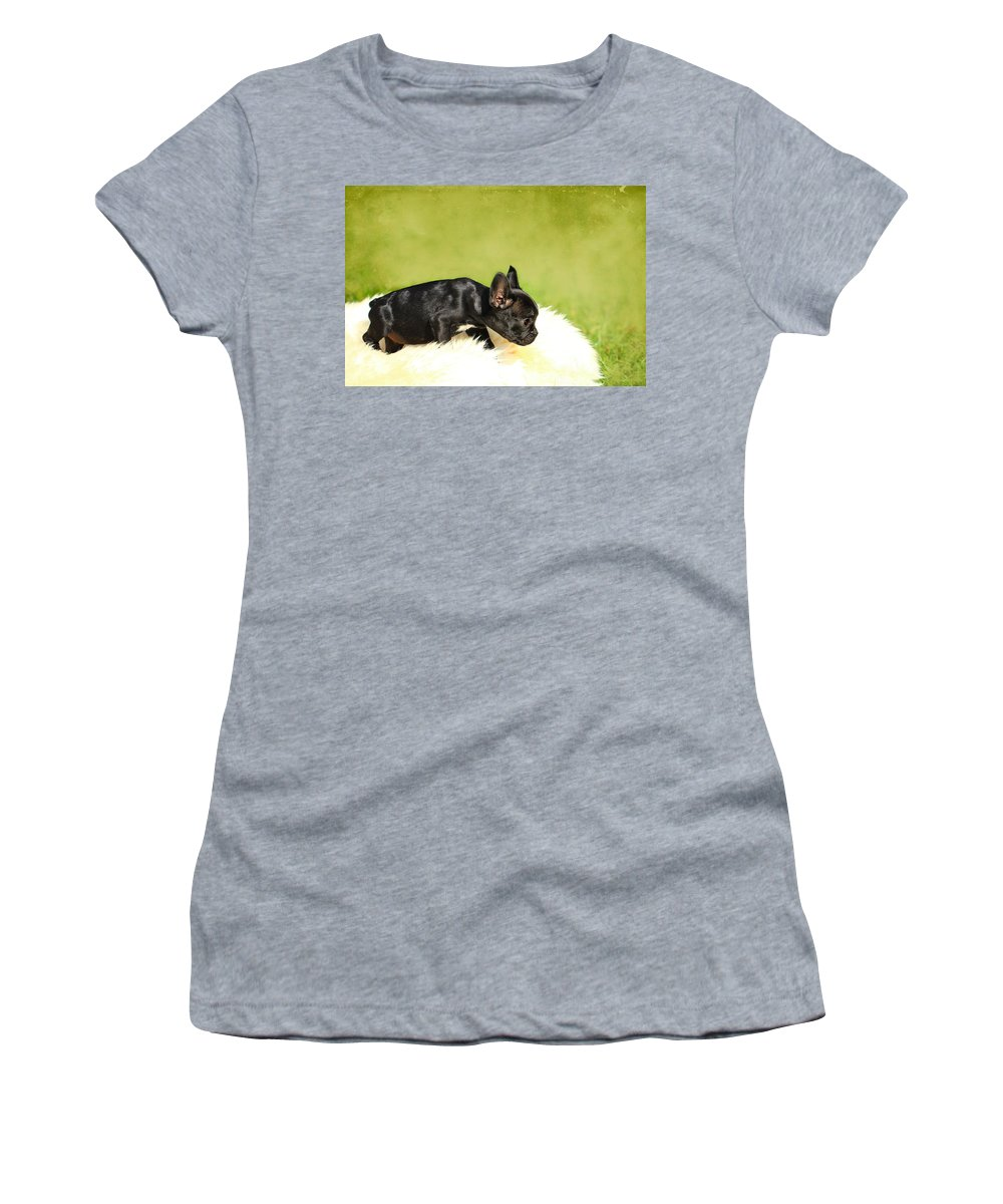 French Bulldogs Women's T-Shirt featuring the photograph French Bulldoggs by Heike Hultsch