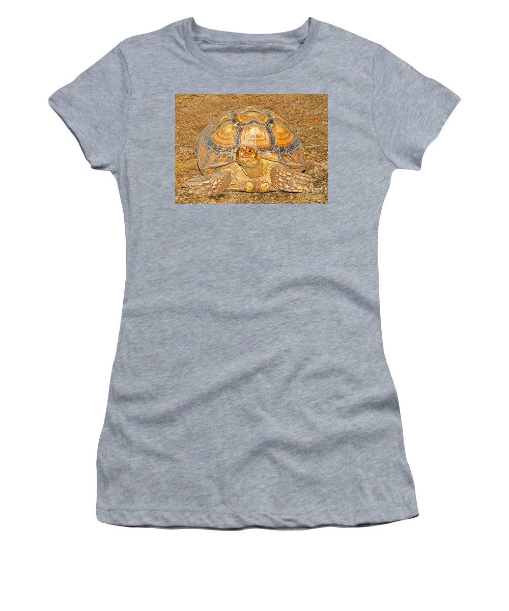 Desert Turtle Women's T-Shirt featuring the photograph African Spur Thigh Tortoise by Millard H. Sharp