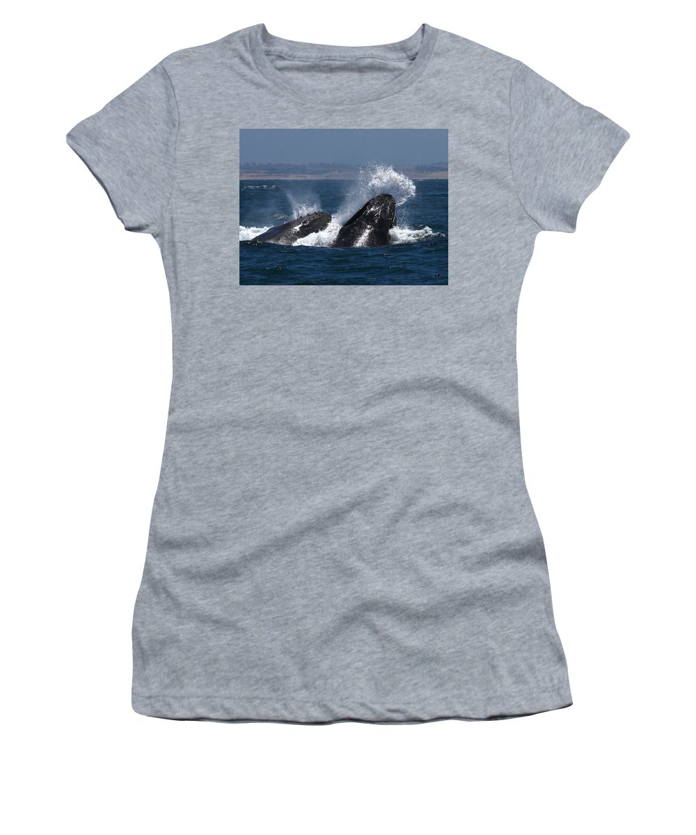 Monterey Women's T-Shirt featuring the photograph Anchovie Lunge by David Beebe