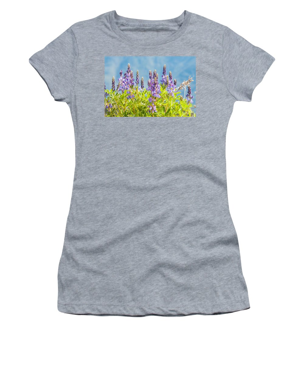 Clallam County Women's T-Shirt (Athletic Fit) featuring the photograph Arctic Lupine by Rich Leighton