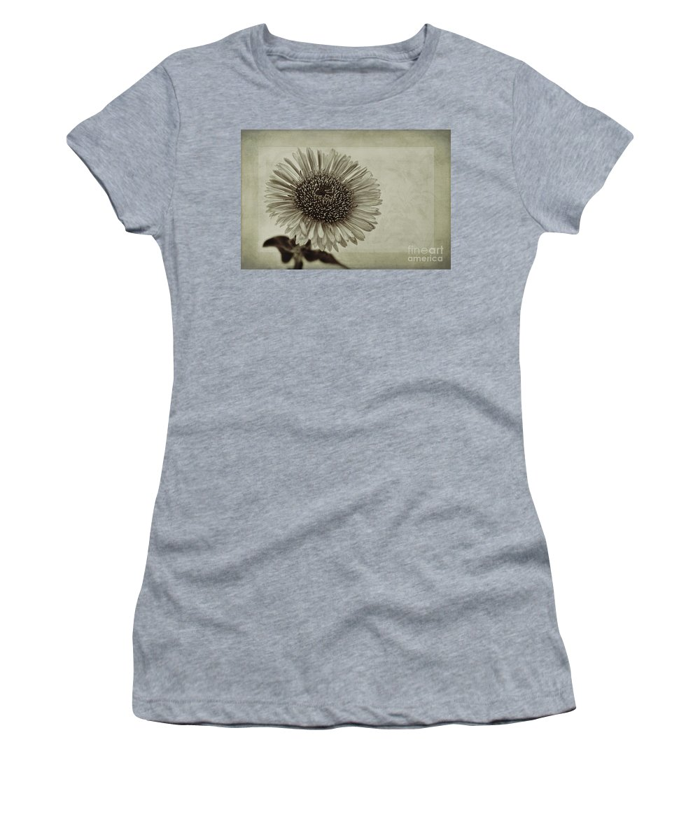 Toned Aster Women's T-Shirt featuring the photograph Aster With Textures by John Edwards