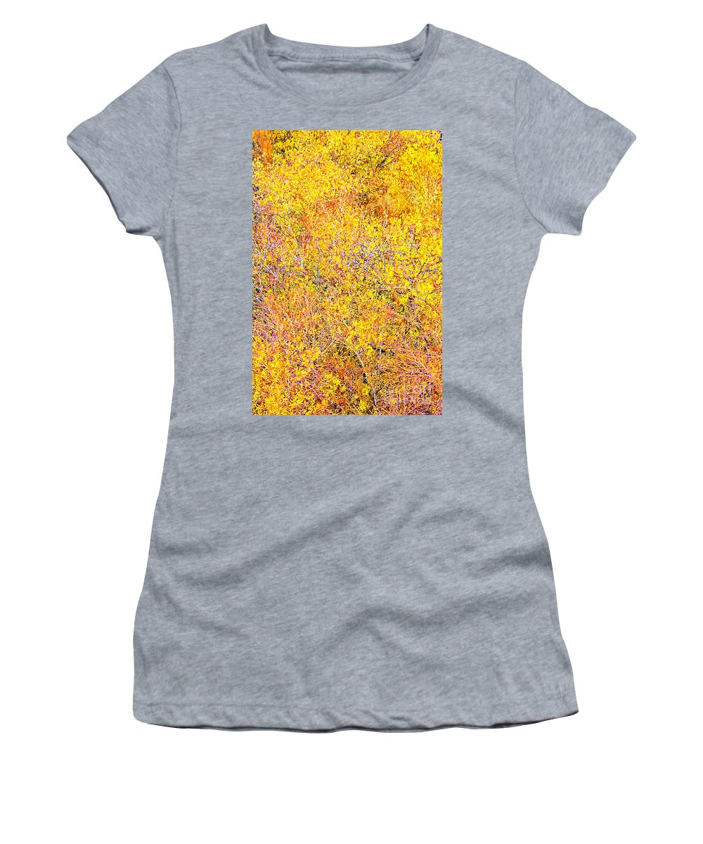 Yellow Women's T-Shirt featuring the photograph Autumn In December by Stefan H Unger