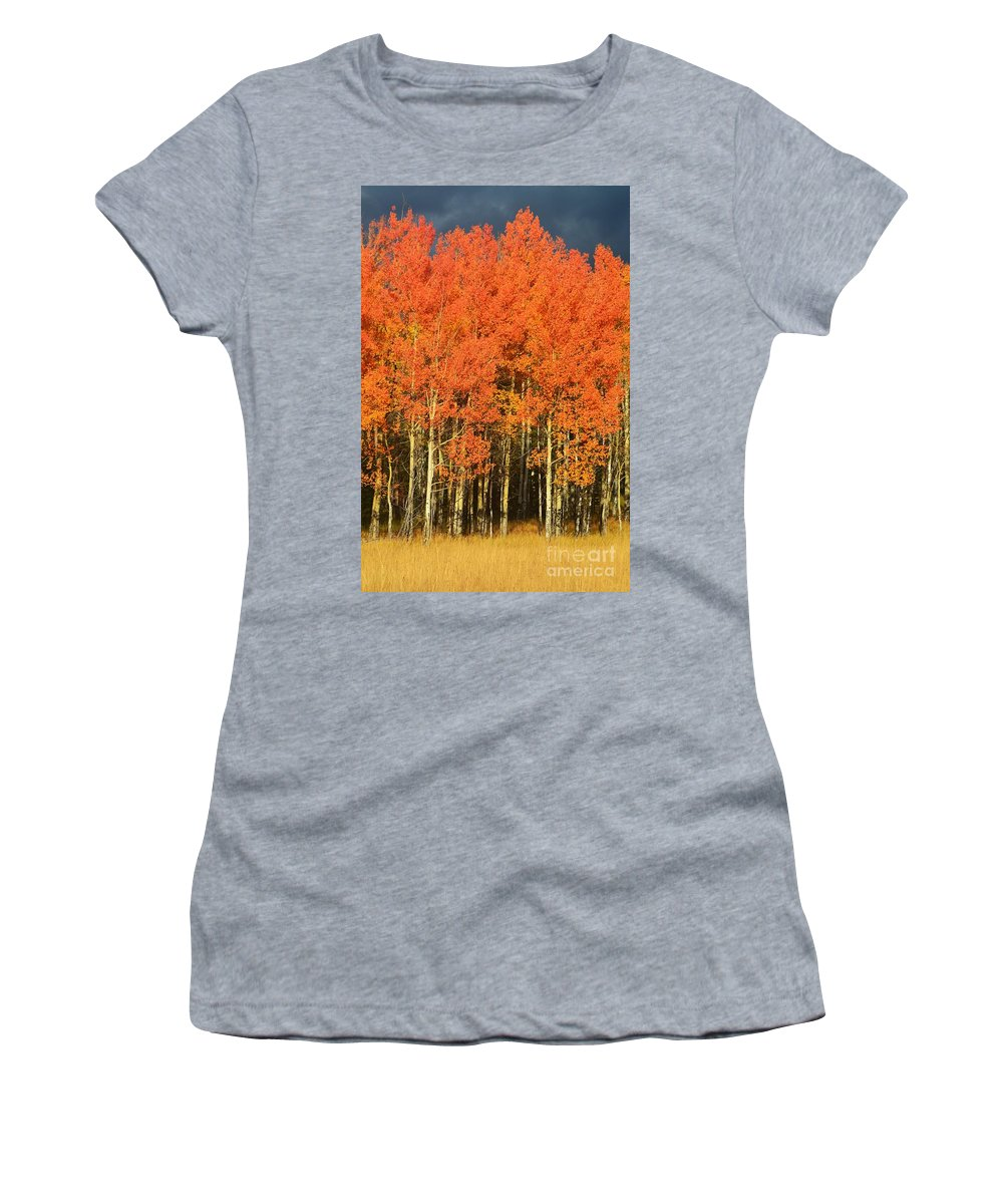 Autumn Women's T-Shirt (Athletic Fit) featuring the photograph Autumn Splender by Sean Jungo