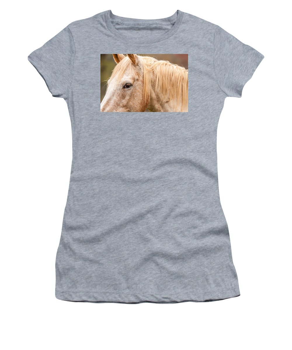Agriculture Women's T-Shirt (Athletic Fit) featuring the photograph Beautiful Gray Horse Portrait by Alex Grichenko