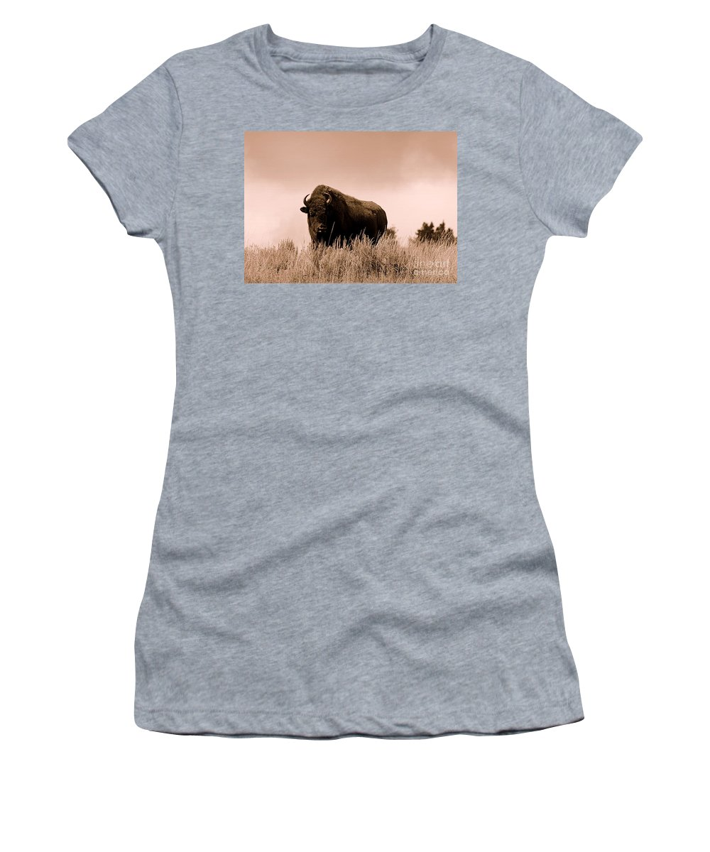 Bison Women's T-Shirt featuring the photograph Bison Cow On An Overlook In Yellowstone National Park Sepia by Catherine Sherman