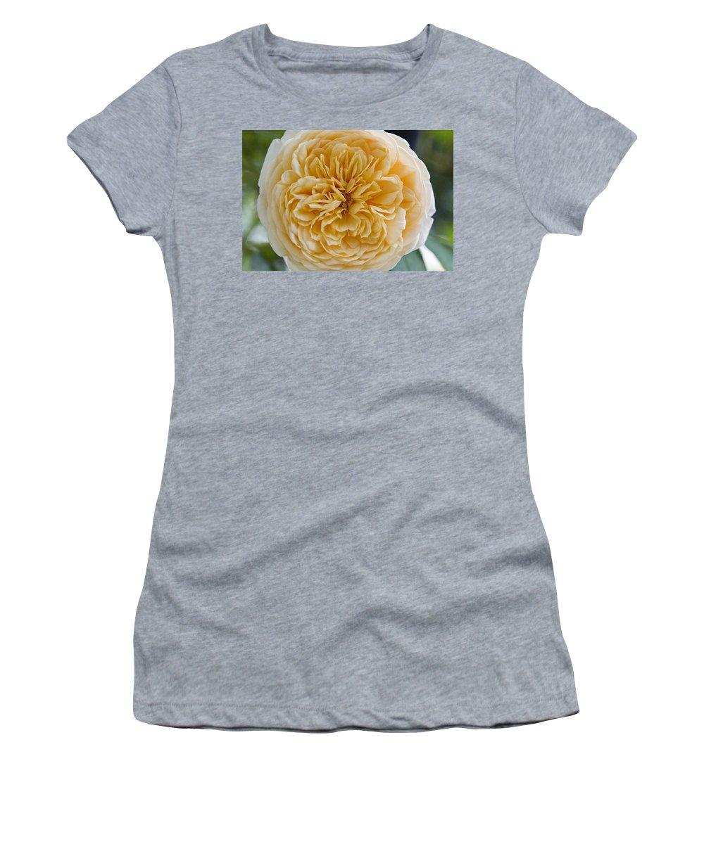 Rose Photographs Women's T-Shirt featuring the photograph Brenda's Garden I by Vernis Maxwell