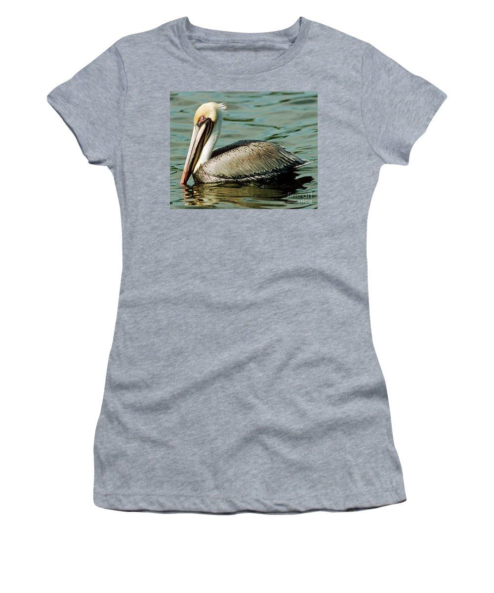 Animal Women's T-Shirt featuring the photograph Brown Pelican Swimming by Millard H. Sharp