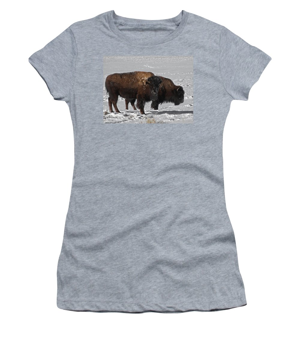 Buffalo Women's T-Shirt (Athletic Fit) featuring the photograph Buffalo In Snow by Ernie Echols