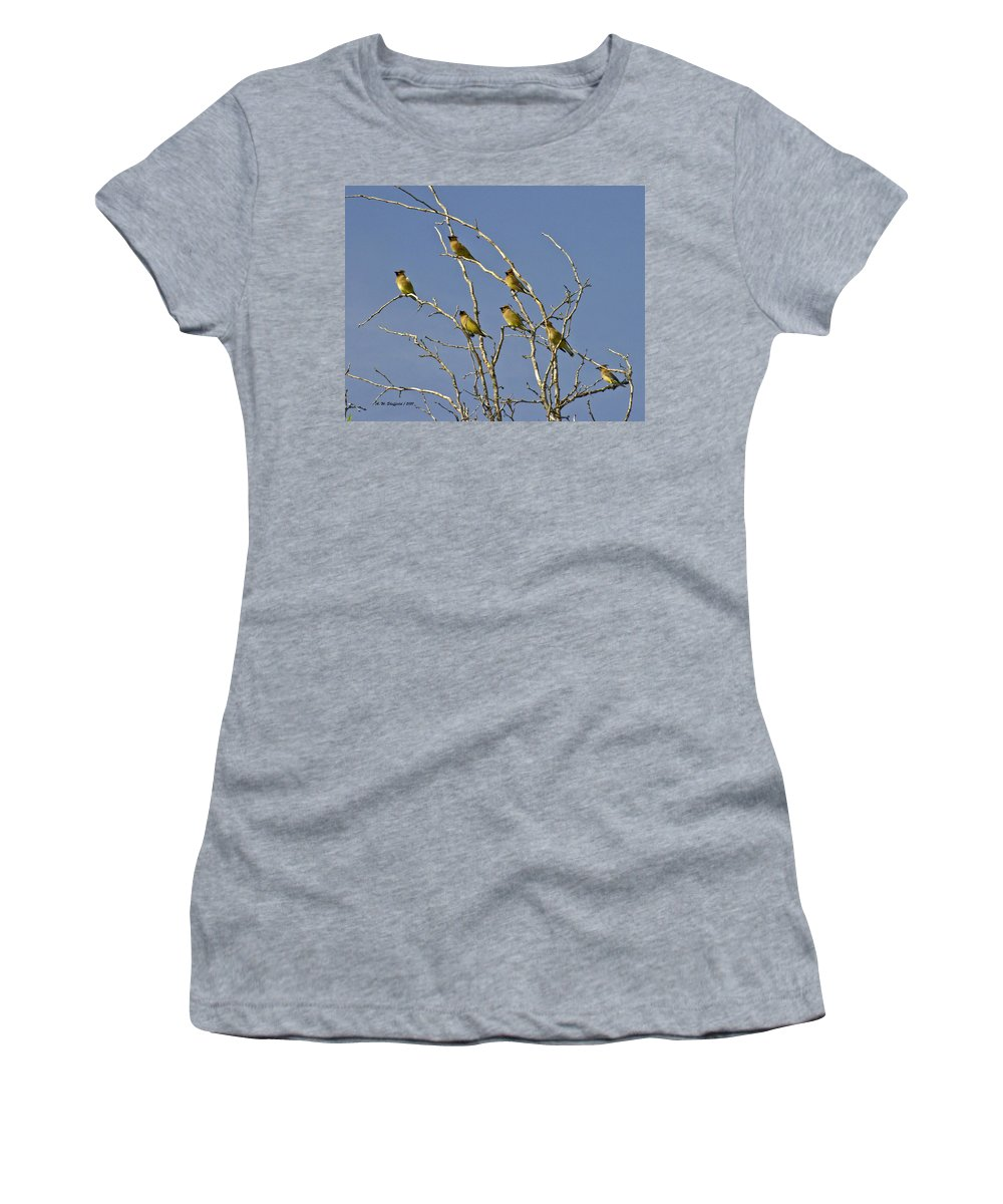 Cedar Women's T-Shirt featuring the photograph Cedar Waxwings by Allen Sheffield