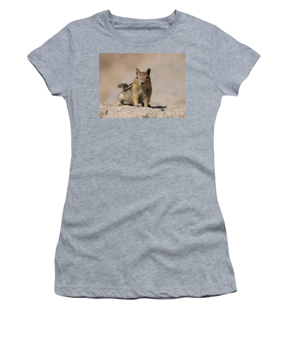 Chipmunk Women's T-Shirt (Athletic Fit) featuring the photograph Chipmunk by Jacklyn Duryea Fraizer