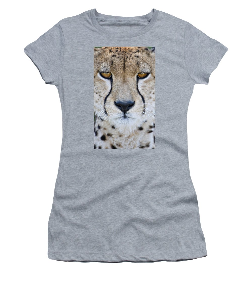 Photography Women's T-Shirt featuring the photograph Close-up Of A Cheetah Acinonyx Jubatus by Panoramic Images