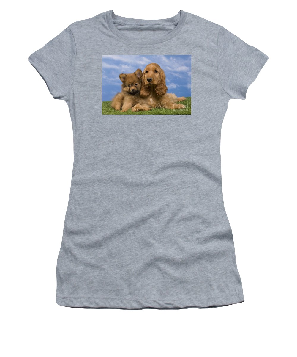 English Cocker Women's T-Shirt (Athletic Fit) featuring the photograph Cocker Spaniel And Pomeranian by Jean-Michel Labat