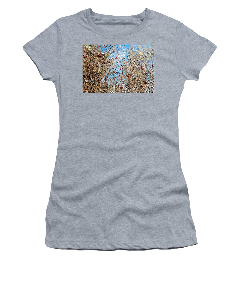 Winter Women's T-Shirt featuring the photograph Colorful Winter Wonderland by Frozen in Time Fine Art Photography