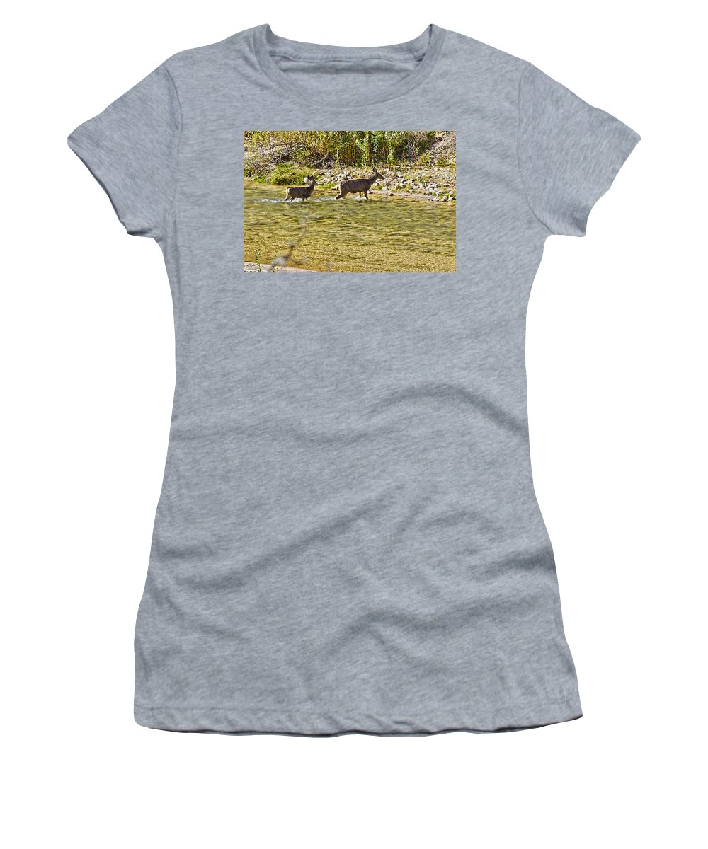 Zion National Park Women's T-Shirt featuring the photograph Crossing The River by Jon Berghoff