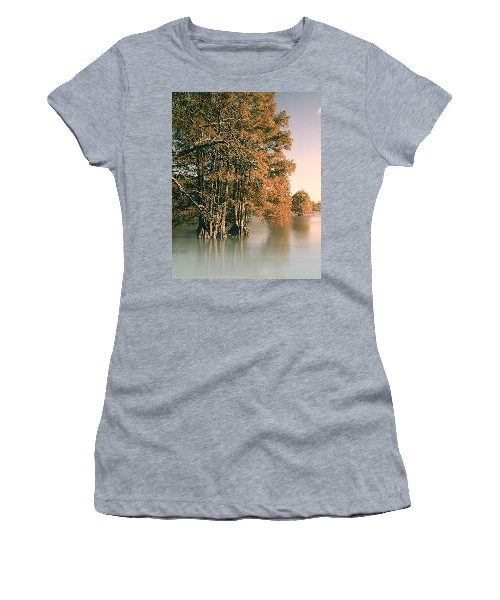 Bald Women's T-Shirt featuring the photograph Cypress Autumn by Pete Federico