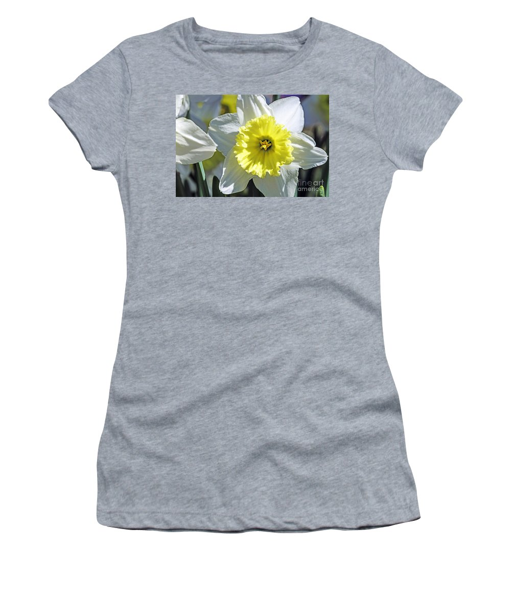 Spring Women's T-Shirt featuring the photograph Daffodil Sunshine by Elvis Vaughn