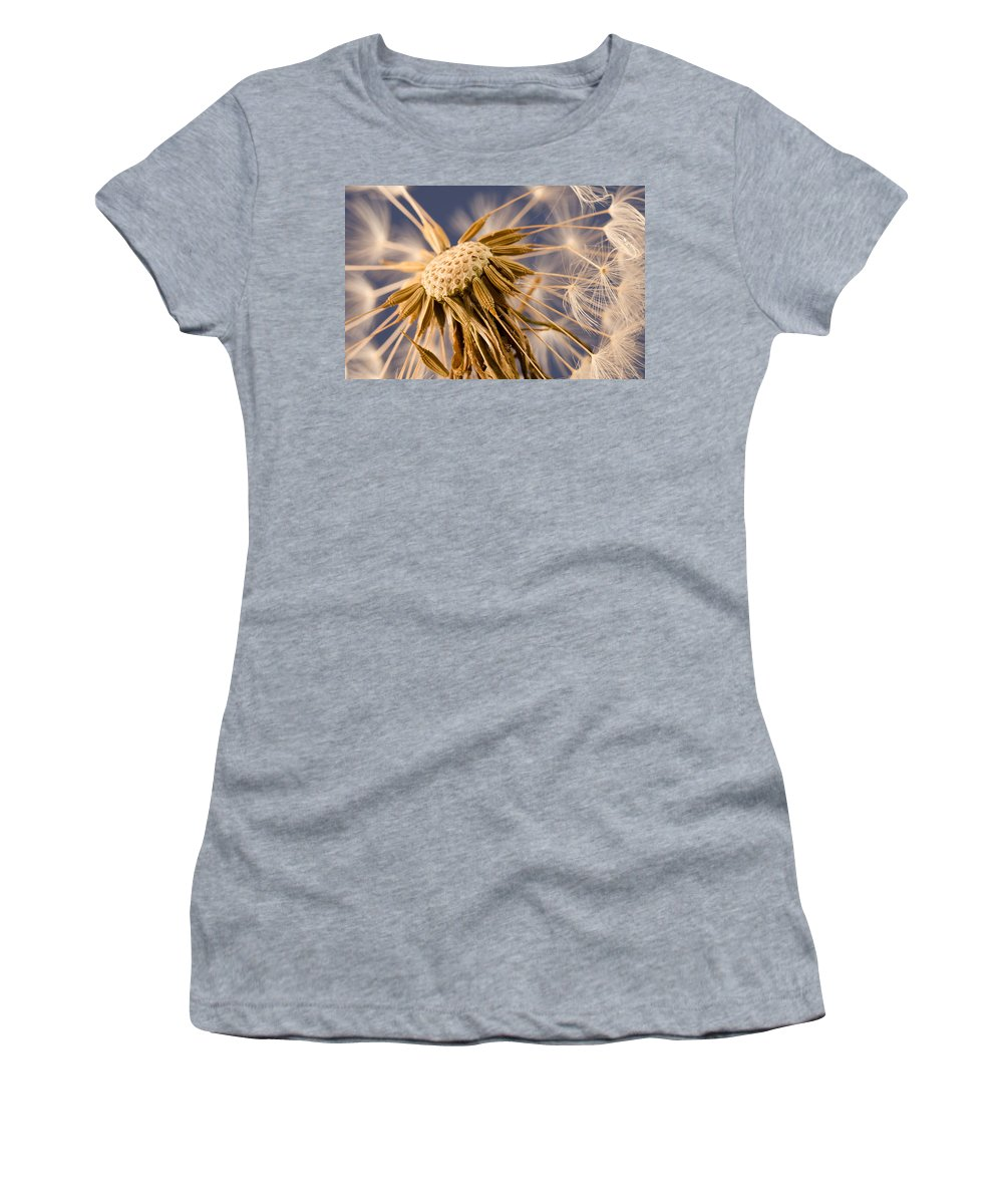 Dandelion Women's T-Shirt (Athletic Fit) featuring the photograph Dandelightful by Don Schwartz