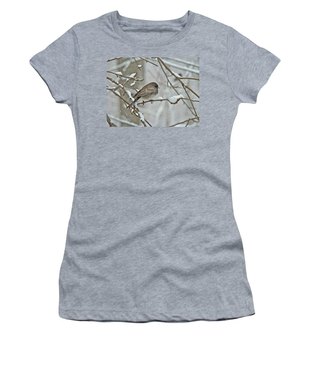 Junco Women's T-Shirt (Athletic Fit) featuring the photograph Dark-eyed Junco Or Snowbird - Junco Hyemalis by Mother Nature