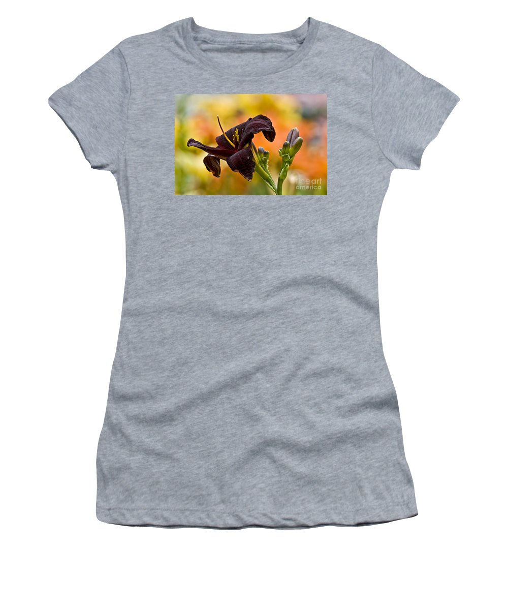 Daylily Women's T-Shirt featuring the photograph Daylily Picture 514 by World Wildlife Photography