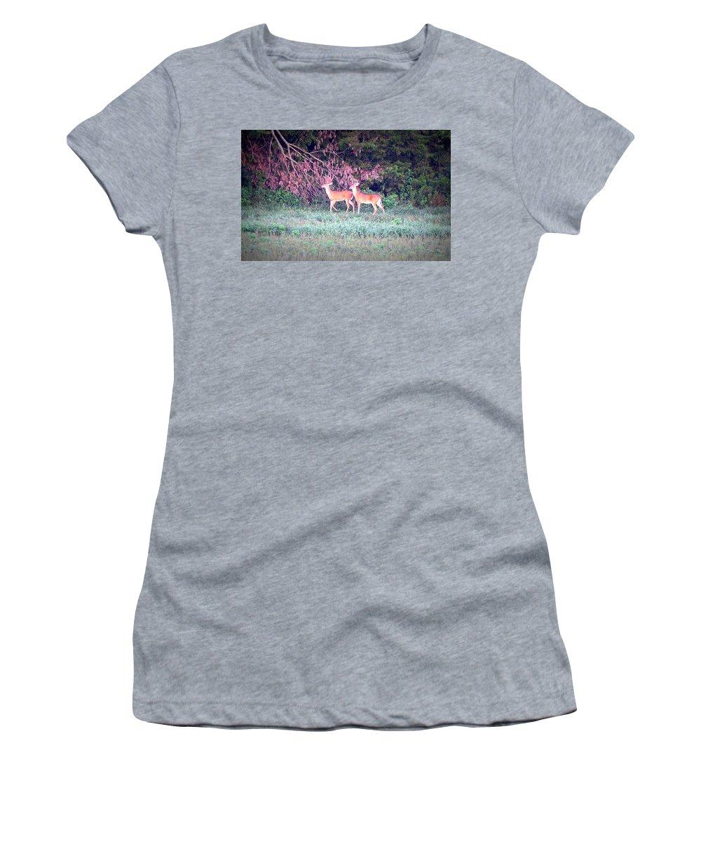 Deer Women's T-Shirt featuring the photograph Deer-img-0151-003 by Travis Truelove
