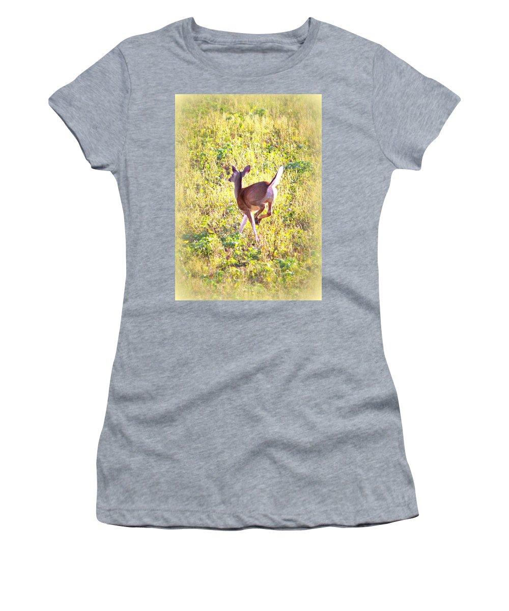 Deer Women's T-Shirt featuring the photograph Deer-img-0456-001 by Travis Truelove