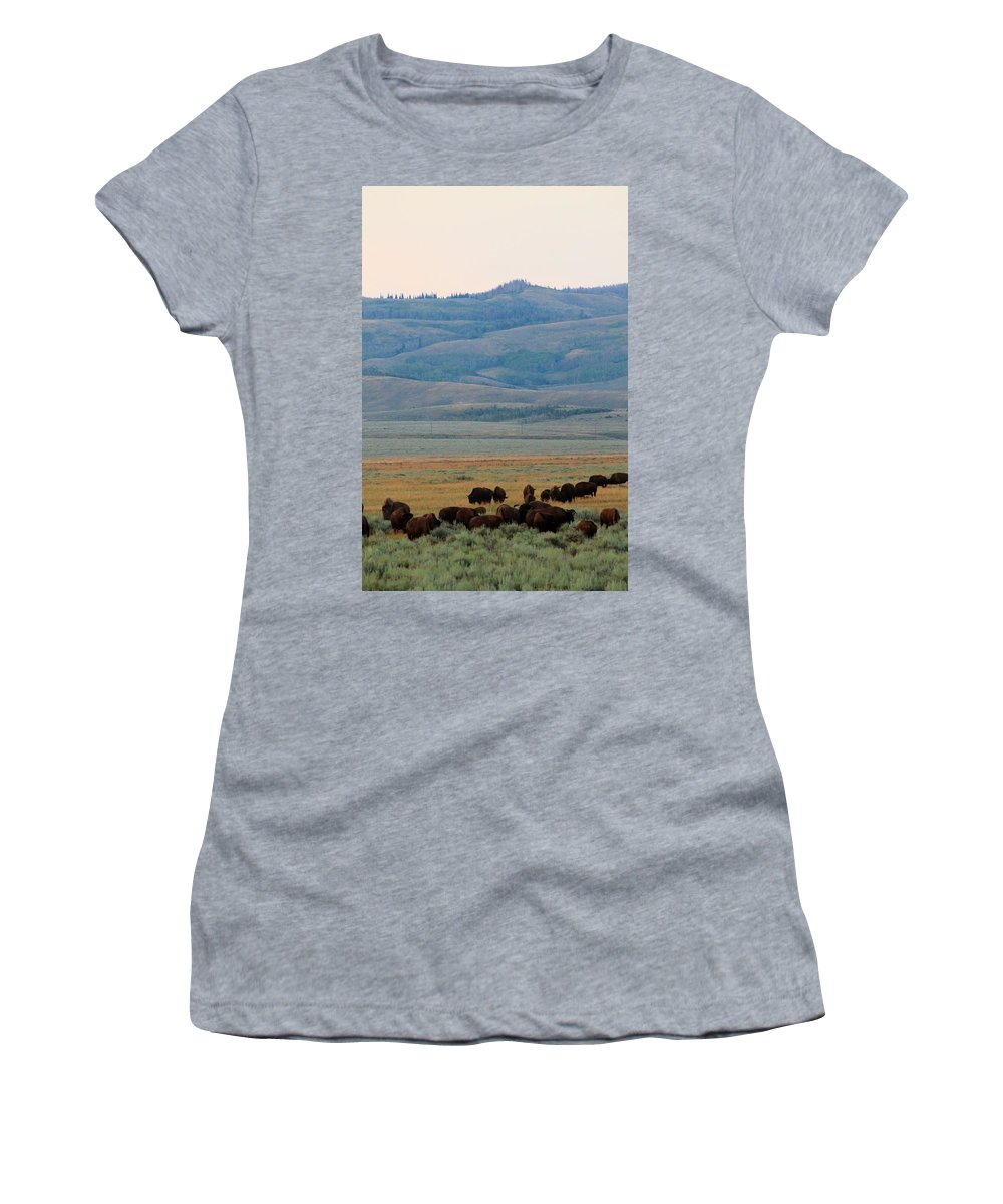 Jackson Hole Women's T-Shirt featuring the photograph Dinner In The Bushes by Catie Canetti
