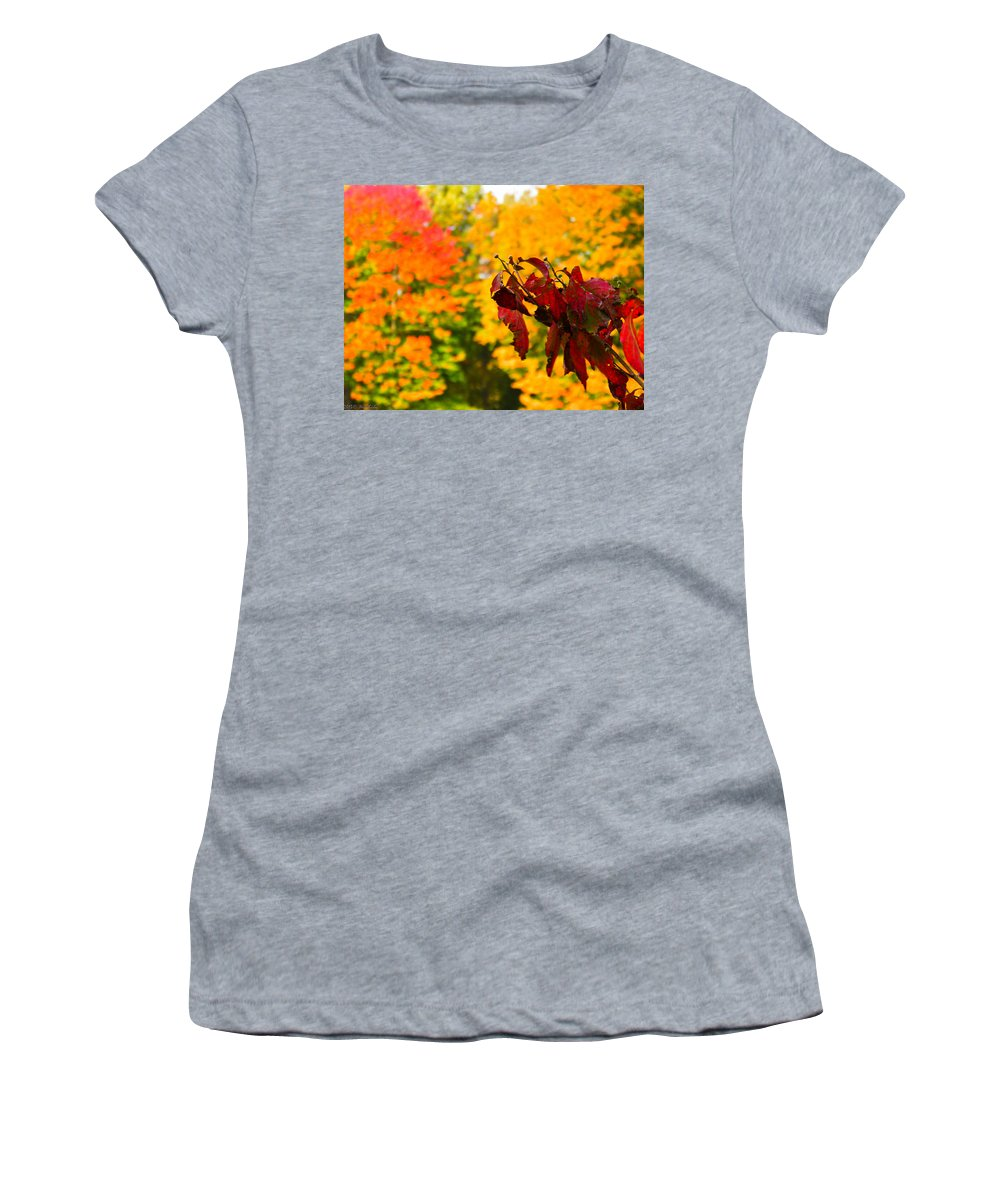 Dogwood Women's T-Shirt (Athletic Fit) featuring the photograph Dogwood And Fall Colors by Nick Kirby