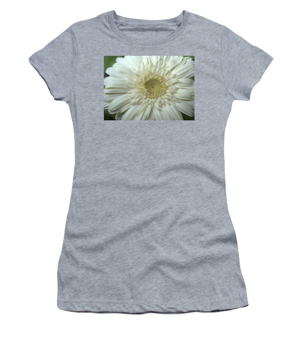 Gerber Women's T-Shirt featuring the photograph Dsc232-001 by Kimberlie Gerner