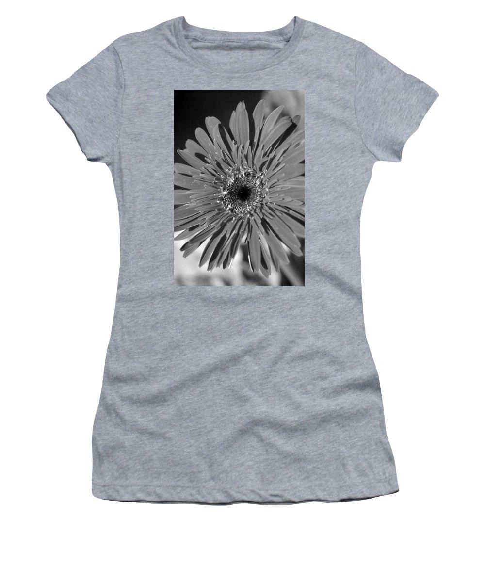 Gerber Women's T-Shirt featuring the photograph Dsc753d1 by Kimberlie Gerner