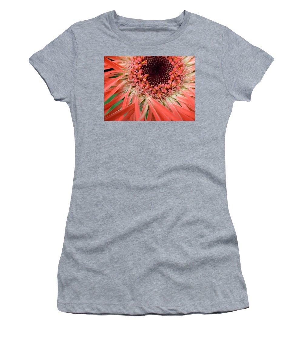 Gerber Women's T-Shirt featuring the photograph Dsc916d-002 by Kimberlie Gerner