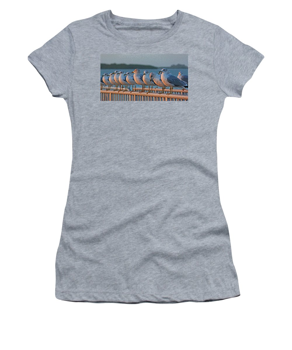Seagull Women's T-Shirt (Athletic Fit) featuring the photograph Ducks In A Row by HH Photography of Florida