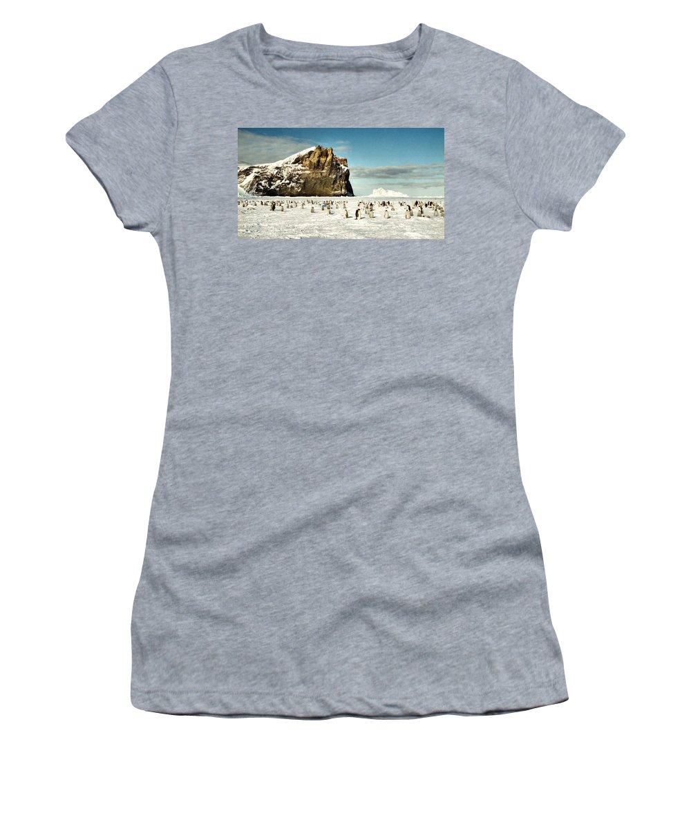 Landscape Women's T-Shirt featuring the photograph Emperor Penguin Colony Cape Washington Antarctica by Carole-Anne Fooks