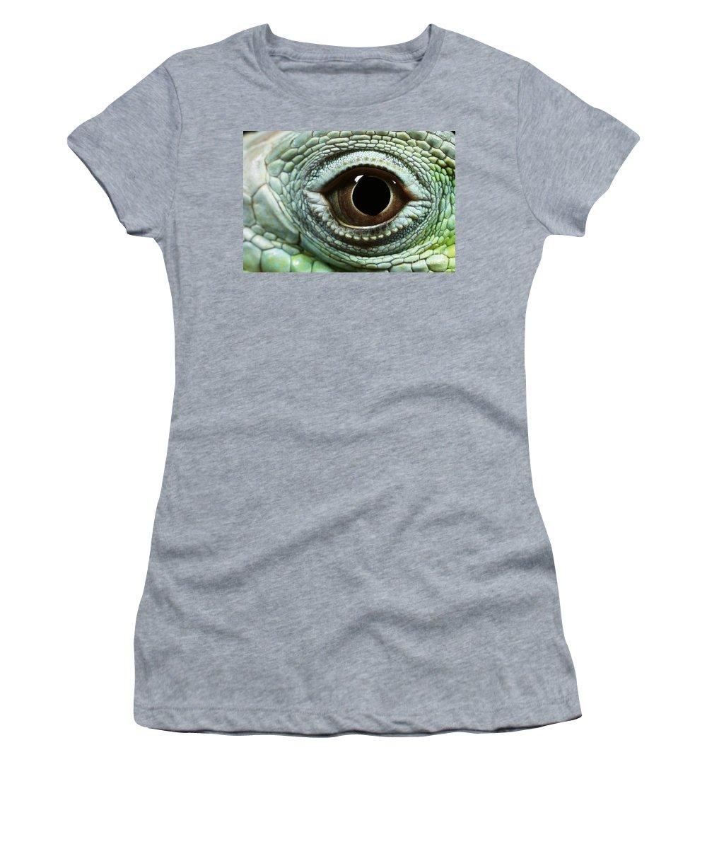 Animal Women's T-Shirt (Athletic Fit) featuring the photograph Eye Of A Common Iguana Iguana Iguana by David Davis