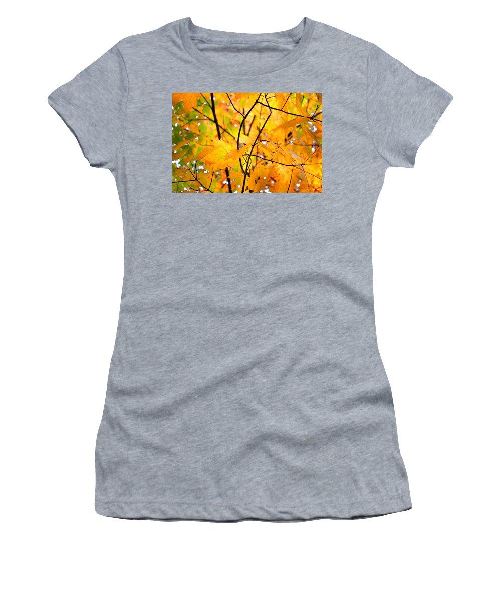 Autumn Women's T-Shirt featuring the photograph Fall Colors 2014-7 by Srinivasan Venkatarajan