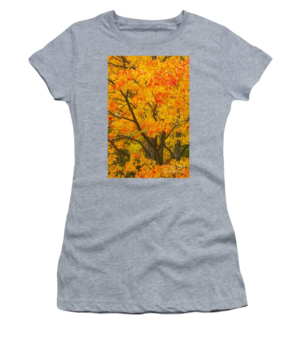 Fall Colors Women's T-Shirt (Athletic Fit) featuring the photograph Fall In Pennsylvania by Paul W Faust - Impressions of Light