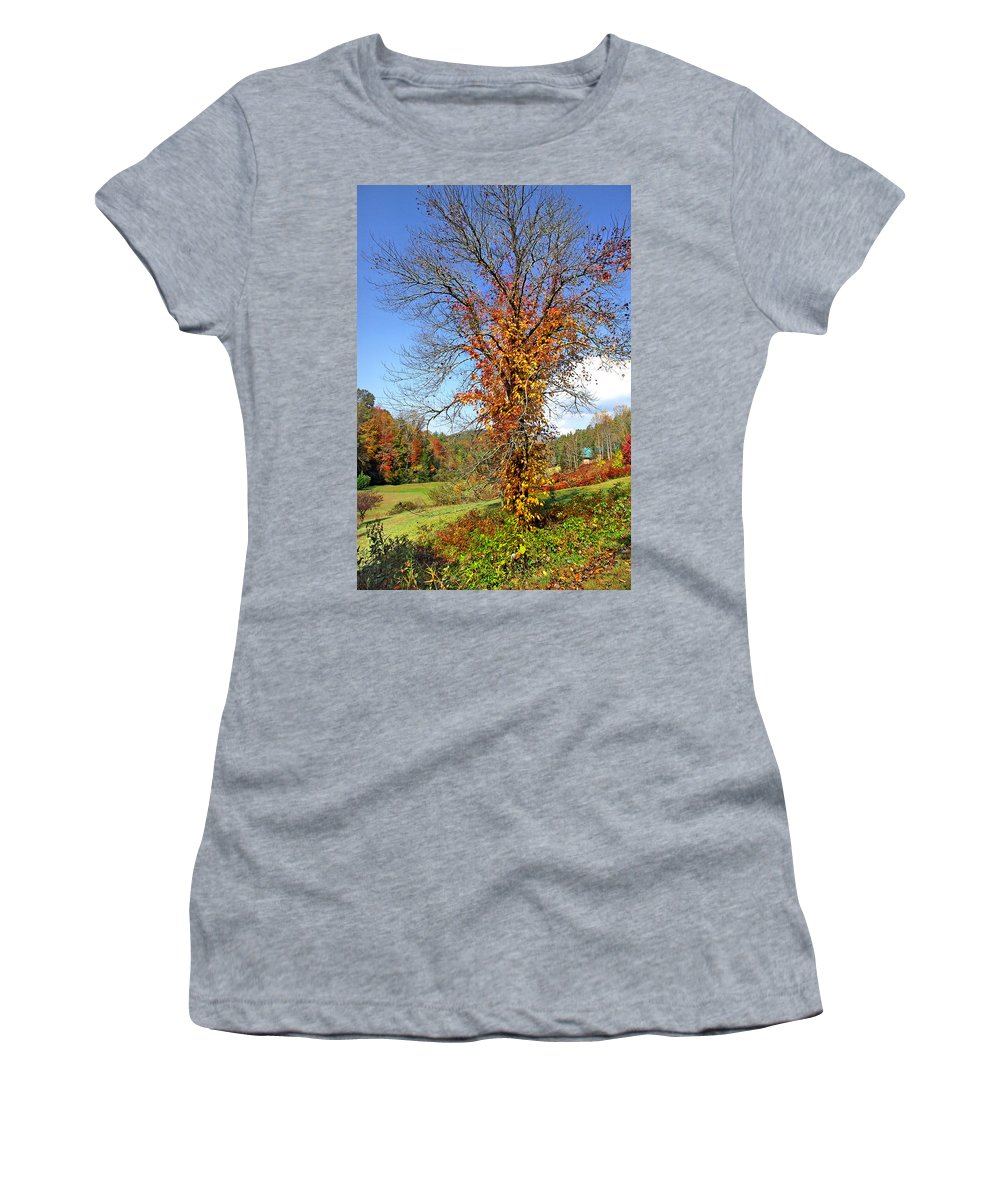 Duane Mccullough Women's T-Shirt featuring the photograph Fall Trees 5 Of Wnc by Duane McCullough