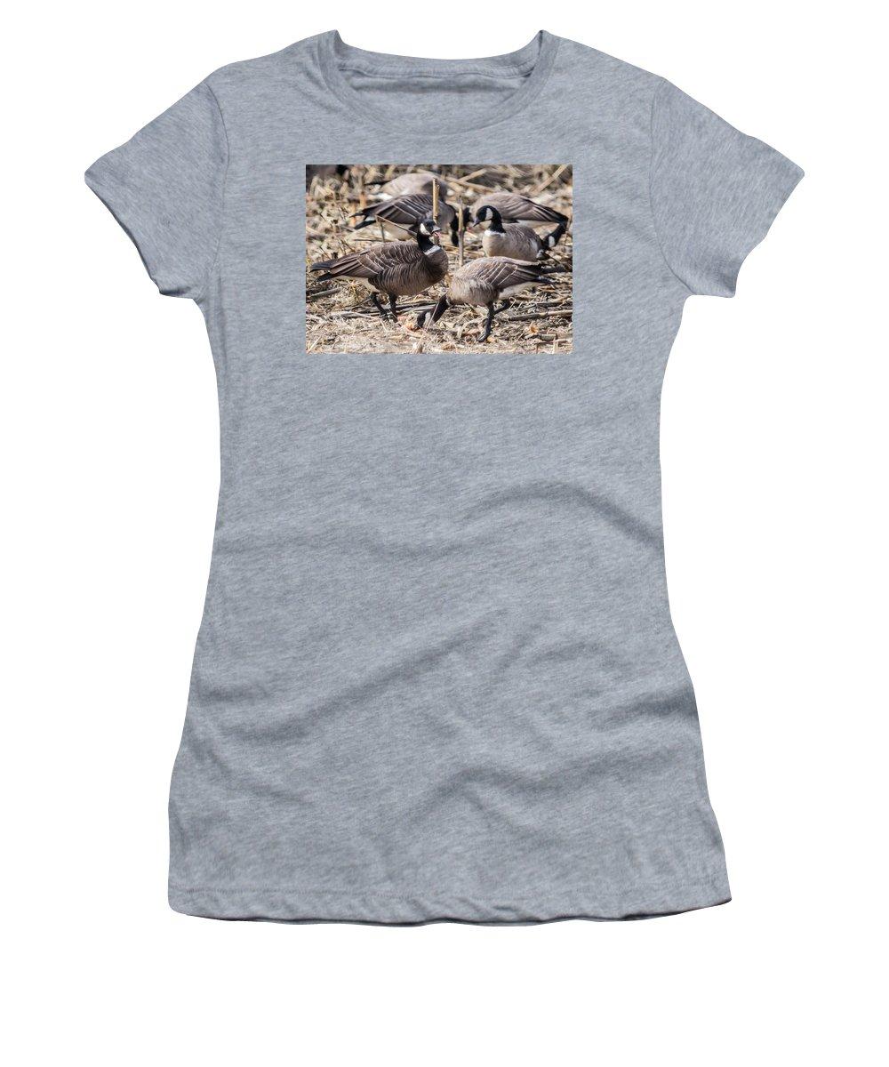 Aleutian Geese Feeding Women's T-Shirt featuring the photograph Feeding Time by Brian Williamson