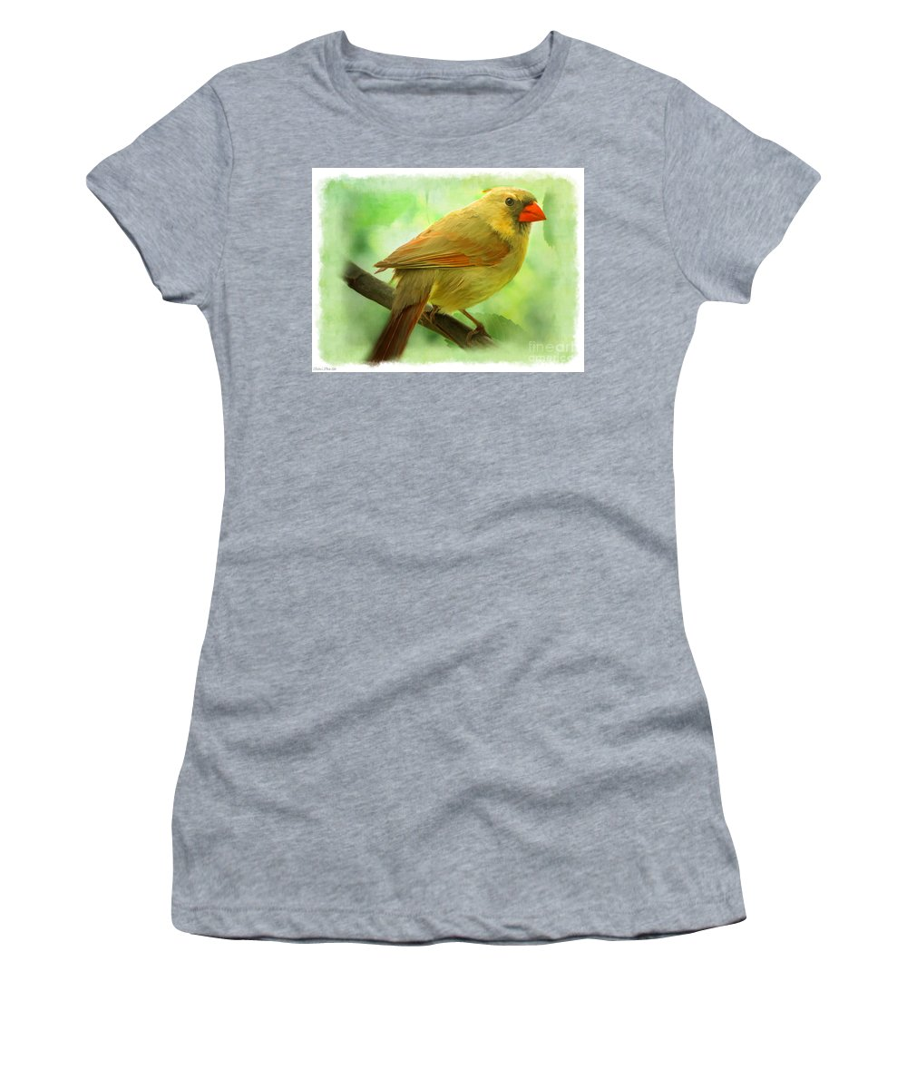 Cardinal Women's T-Shirt featuring the photograph Female Cardinal In Elm Tree - Digital Paint by Debbie Portwood