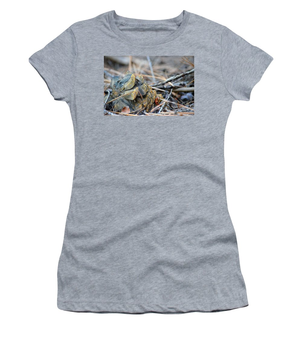 Nevada Women's T-Shirt (Athletic Fit) featuring the photograph Forgotten Pine Cone 2 by Brent Dolliver