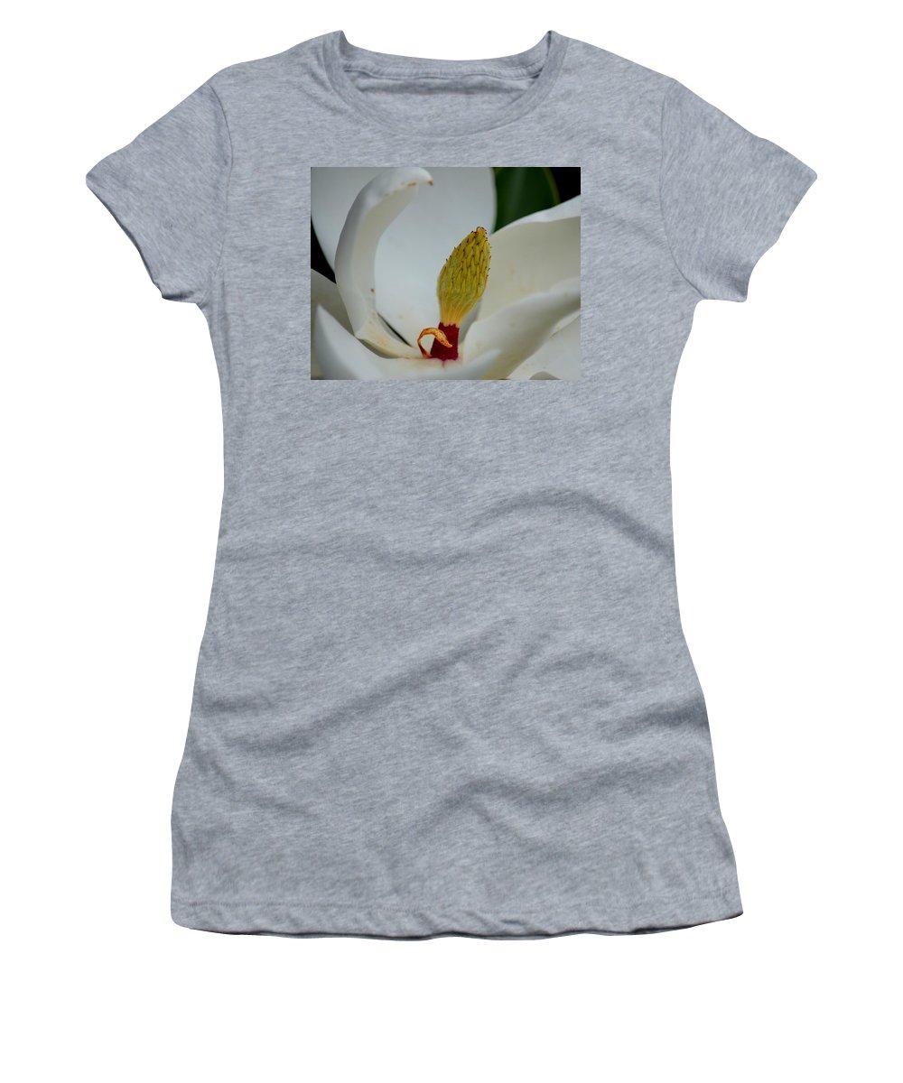 Gold Centered Magnolia Women's T-Shirt featuring the photograph Gold Centered Magnolia by Maria Urso