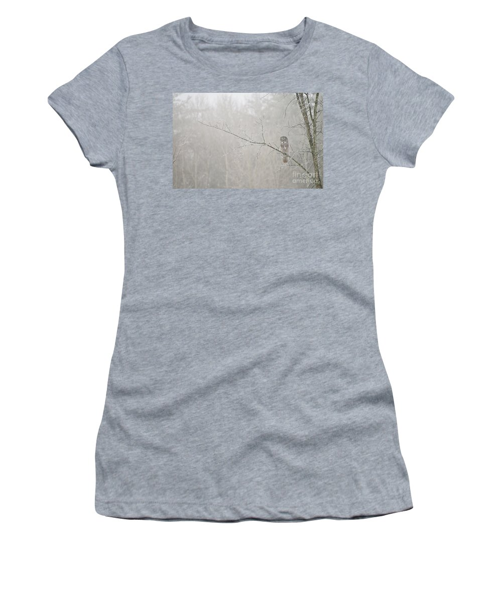 Great Gray Owl Women's T-Shirt featuring the photograph Great Gray Owl Pictures 645 by World Wildlife Photography