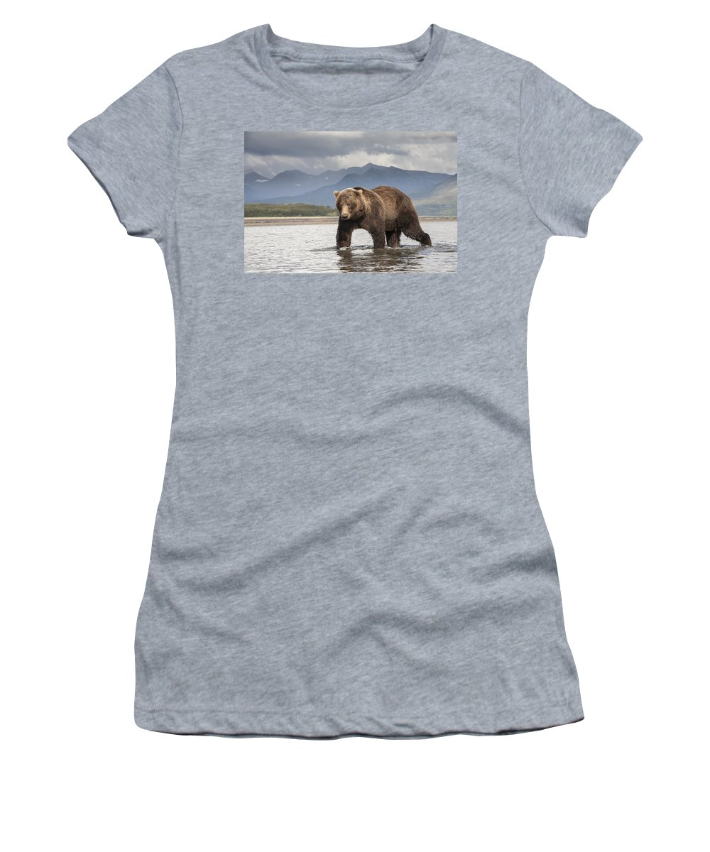 Feb0514 Women's T-Shirt (Athletic Fit) featuring the photograph Grizzly Bear In River Katmai Np Alaska by Matthias Breiter