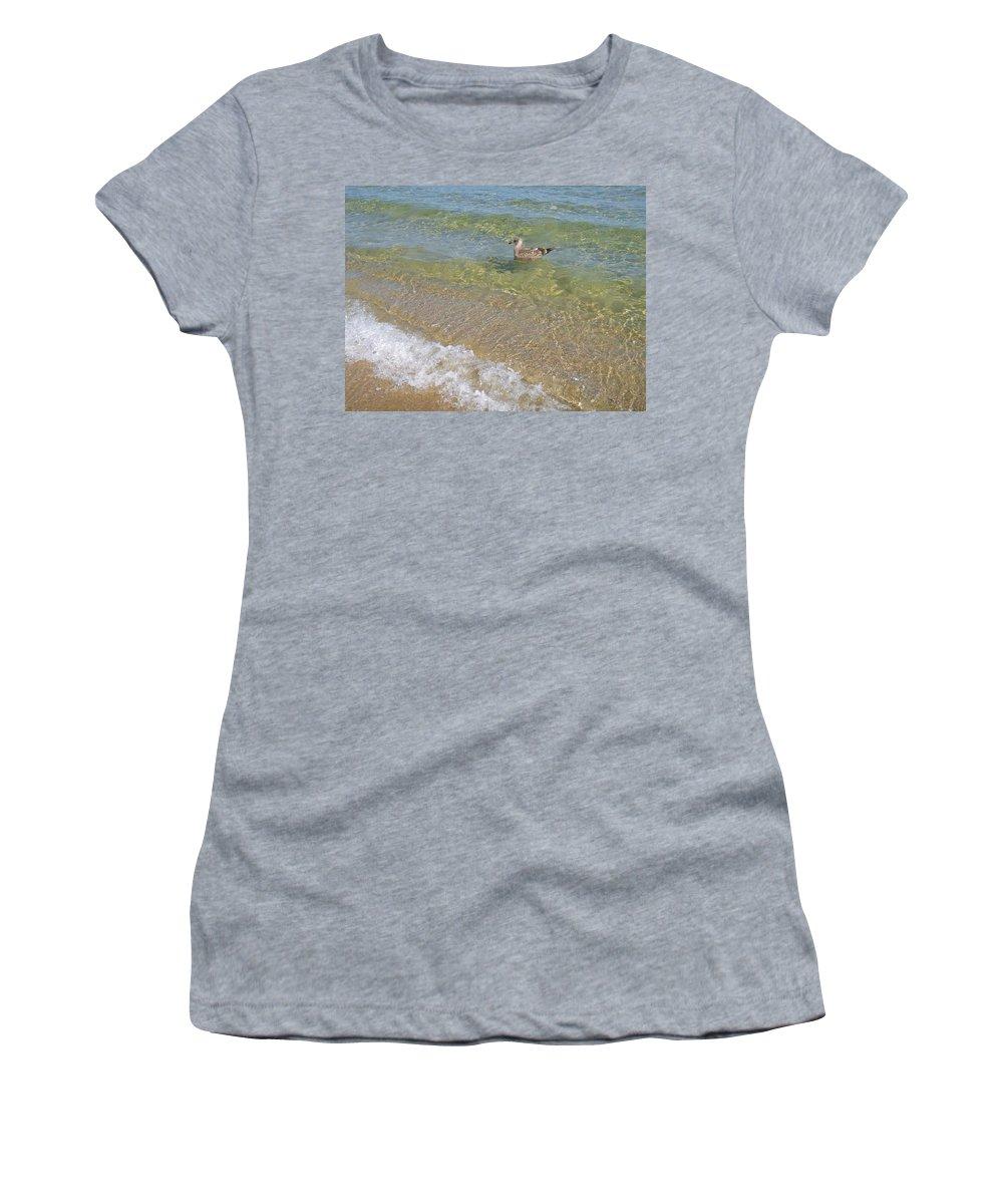 Seagull Women's T-Shirt featuring the photograph Gull Floating by Ellen Paull