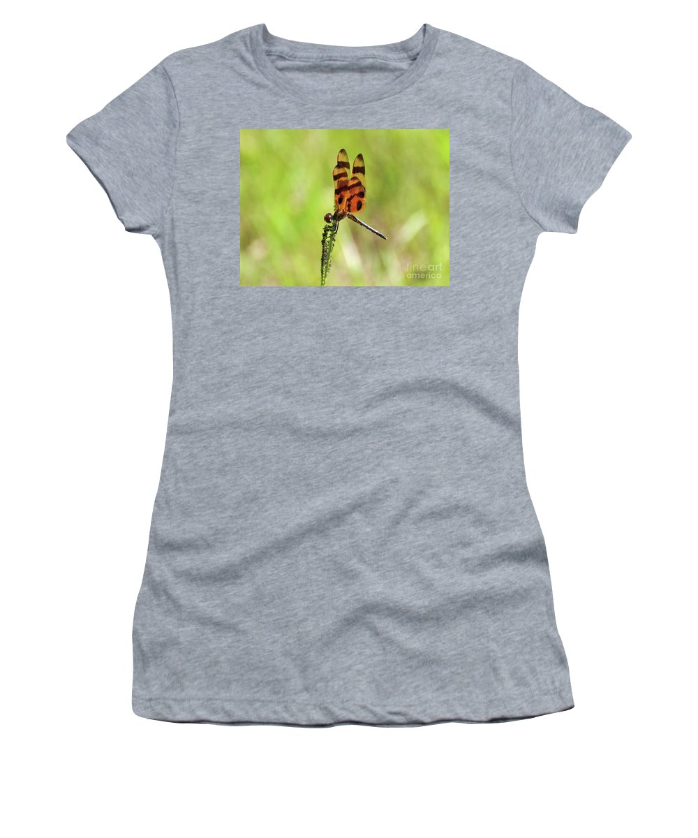 Dragonfly Women's T-Shirt featuring the photograph Halloween Pennant by Al Powell Photography USA
