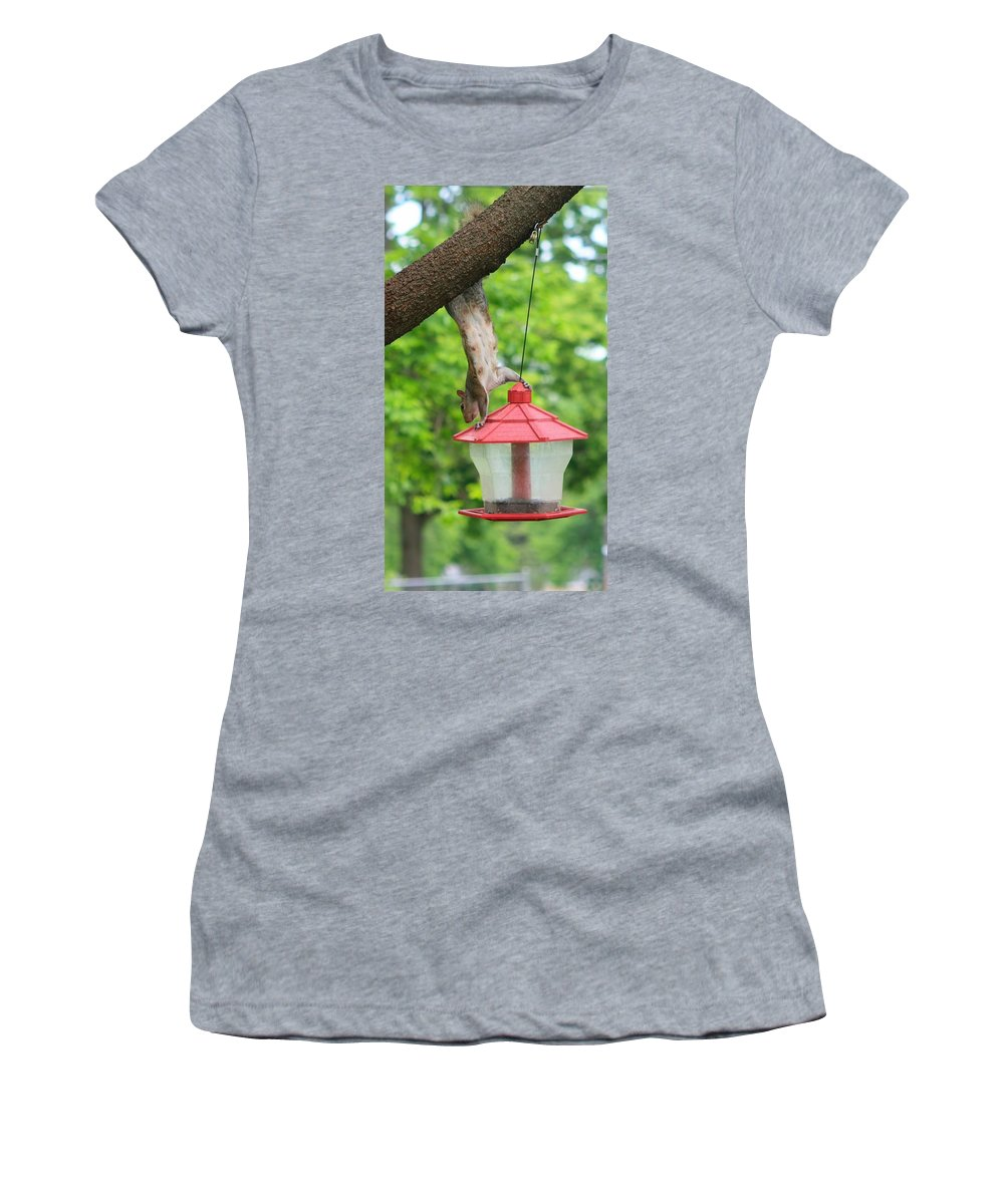 Hanging Squirrel Women's T-Shirt featuring the photograph Hanging Squirrel by Amanda Stadther