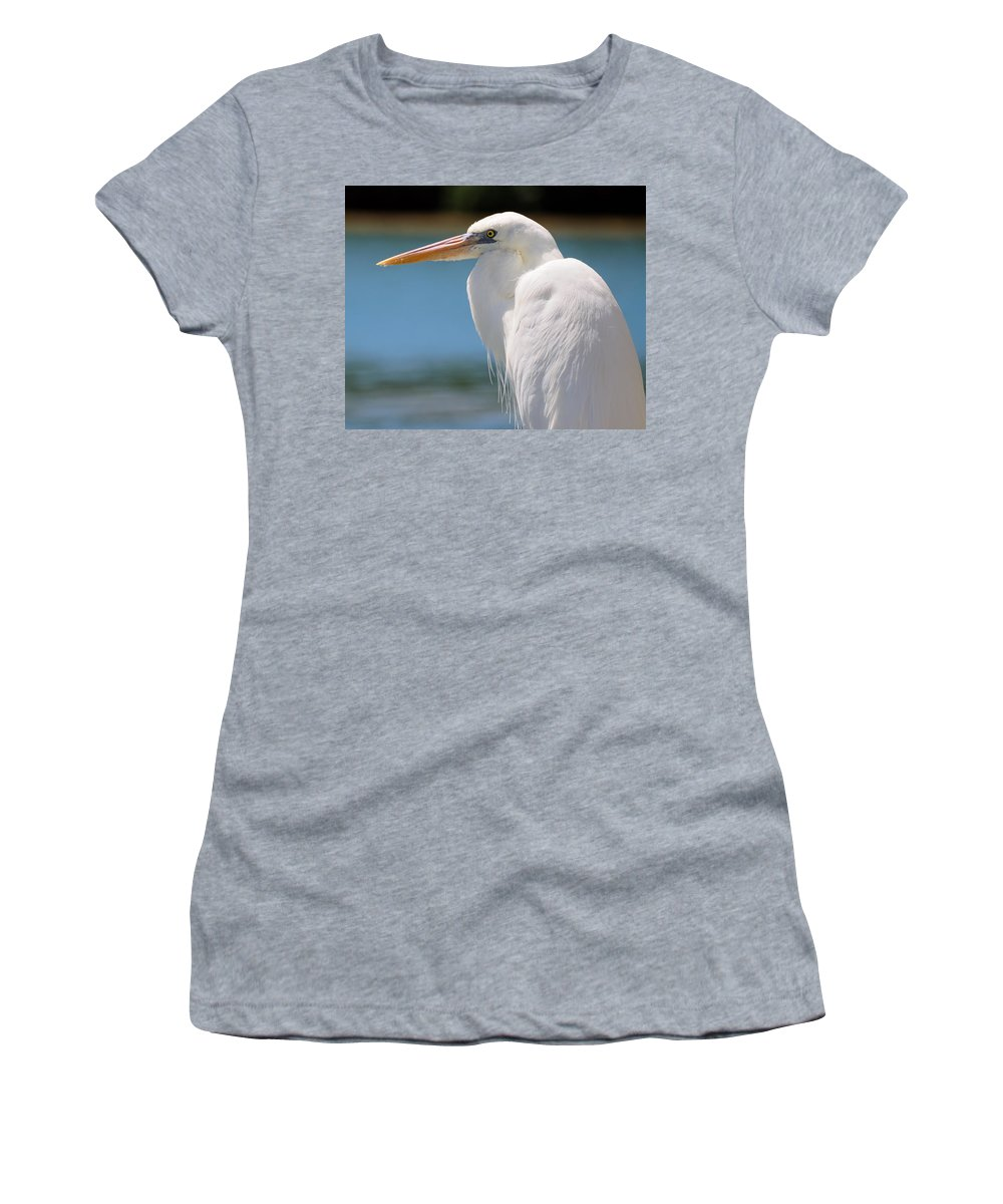 White Women's T-Shirt (Athletic Fit) featuring the photograph Heron by David Hart