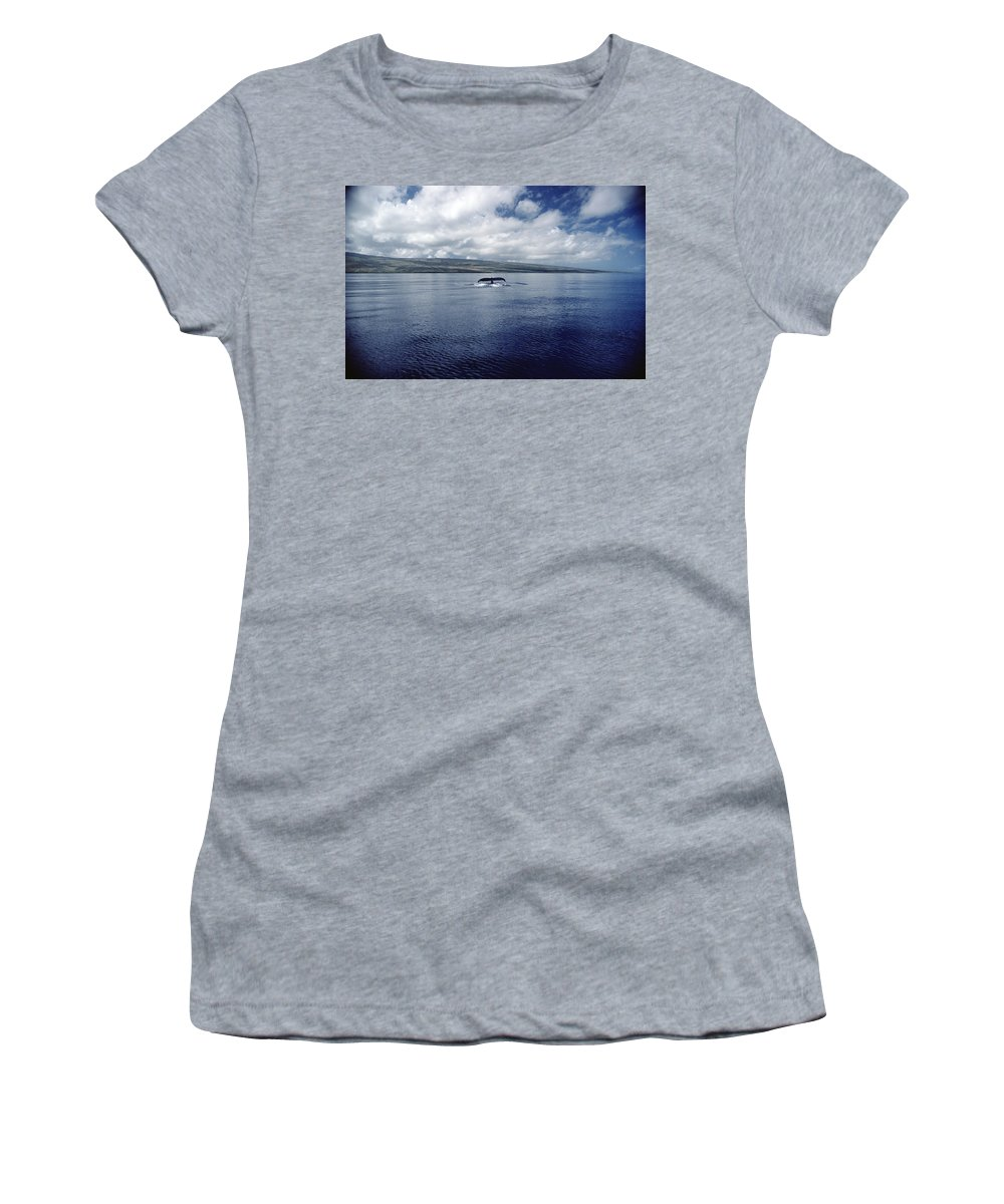 Feb0514 Women's T-Shirt (Athletic Fit) featuring the photograph Humpback Whale Tail Slap Hawaii by Flip Nicklin