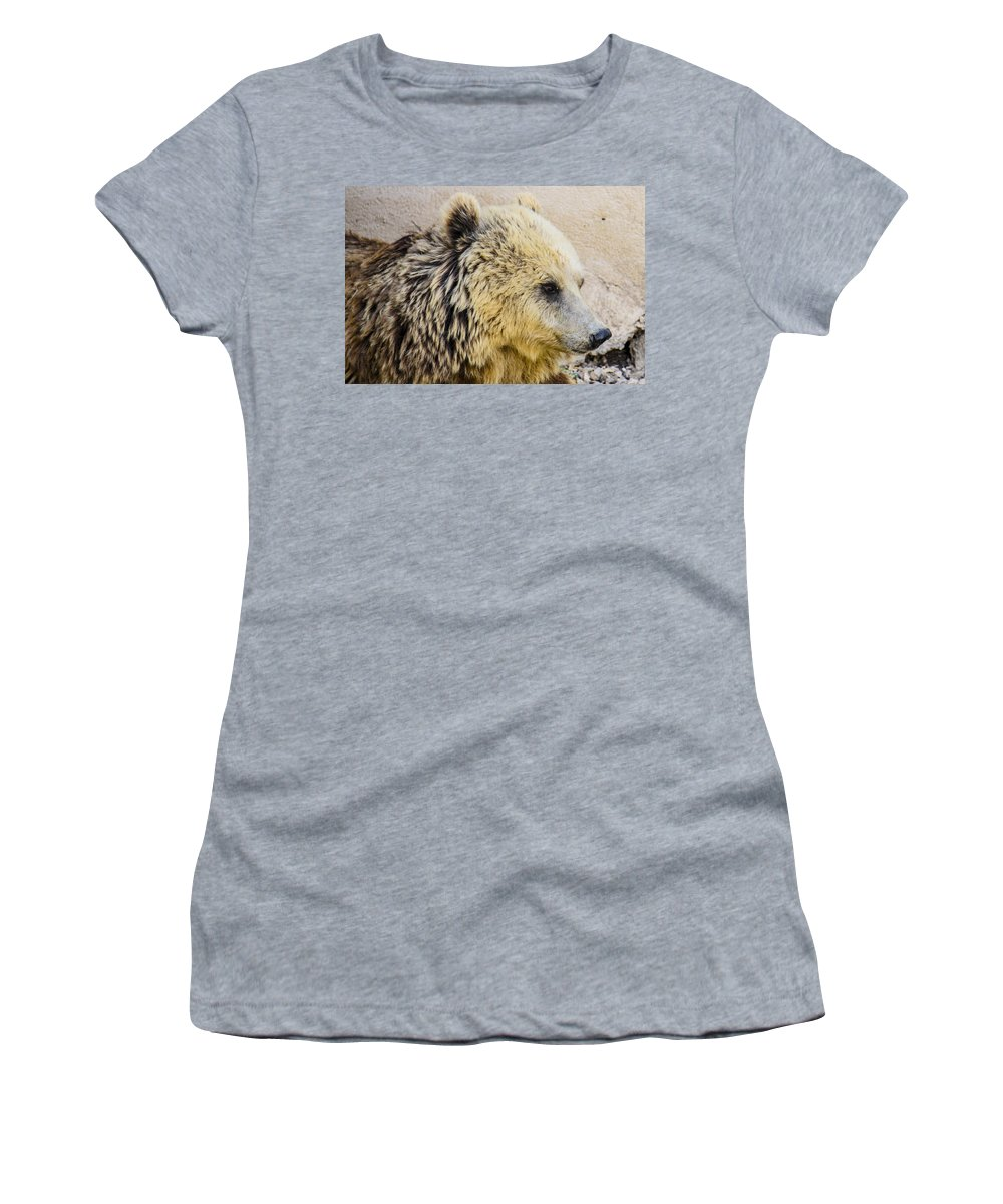 Animal Photographs Women's T-Shirt featuring the photograph Hungry Bear by Sotiris Filippou